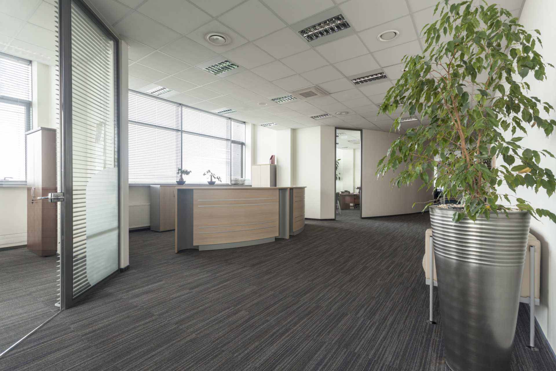 interior architecture and design bournemouth office leasing build to suit office space gainesville